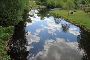 Spring Scenes Around Arnold's Pond Friday
