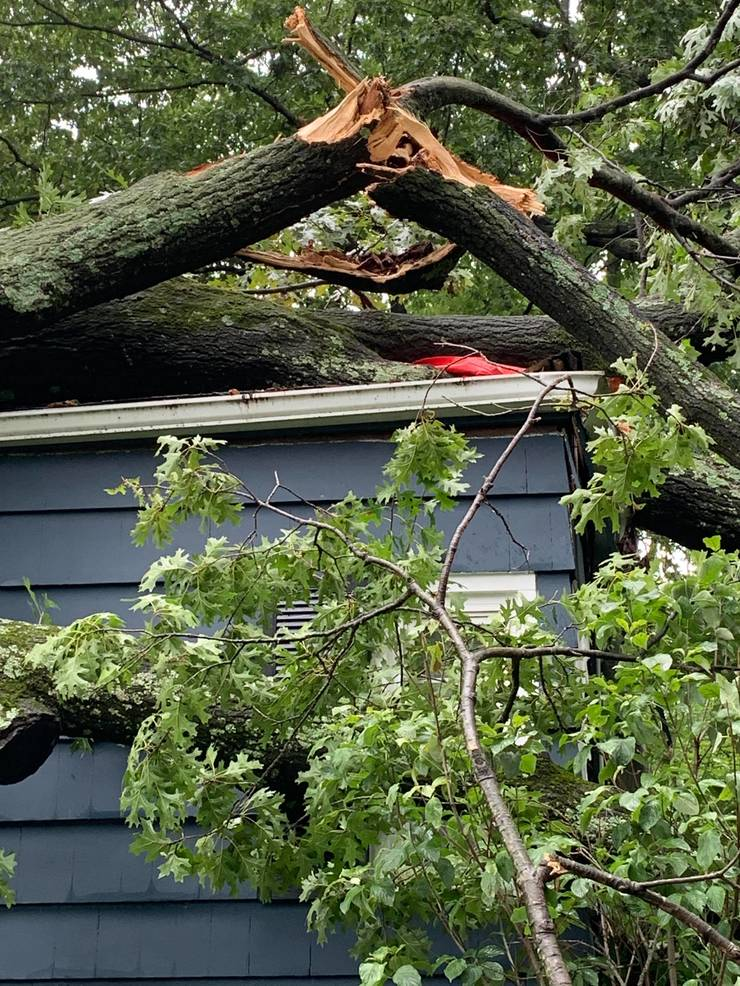 Fanwood and Scotch Plains will begin a special collection of storm-related debris on Monday, Aug. 10.