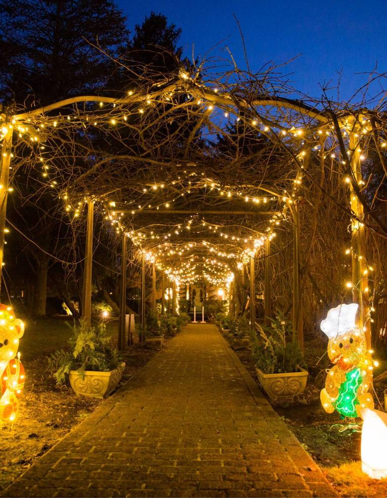 Smithville Park Set to Dazzle for Holiday Season