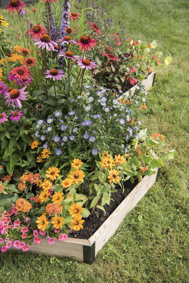 Raised pollinator garden beds can easily be added to any landscape