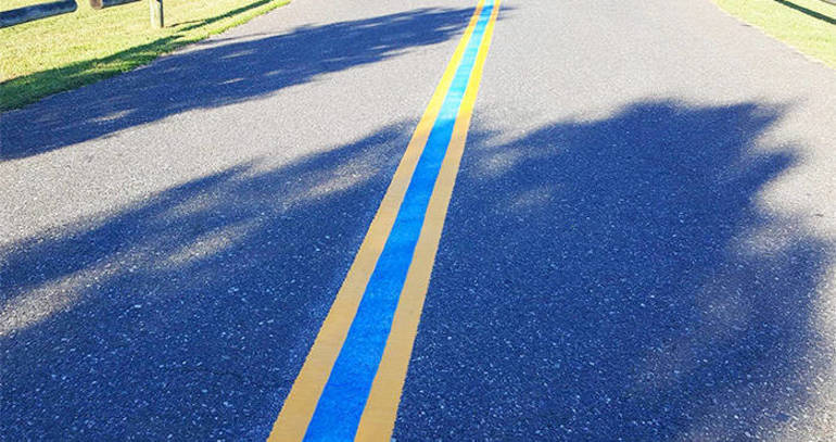 More Than Just A Blue Line in Holmdel