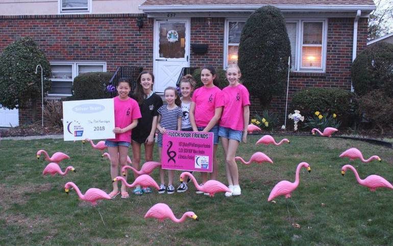2019 Flamingos April 14 a.JPG