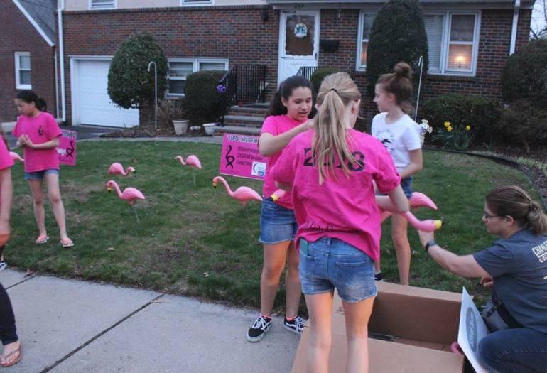 2019 Flamingos April 14 e.JPG