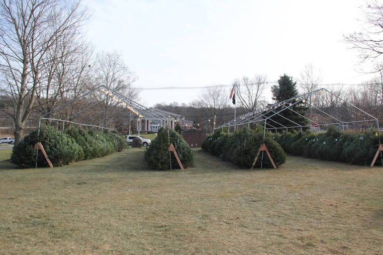 Get your Christmas Tree at Sparta VFW Beginning this Weekend