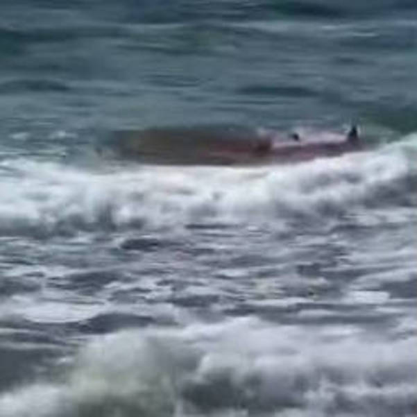 Snapshot of Video Footage