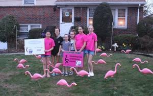 Carousel image 08859252a8fea4046e05 2019 flamingos april 14 a