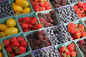 Stafford Farmers Market Kicks Off Tuesday, June 22