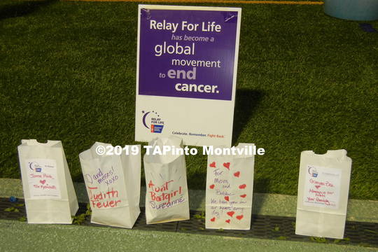 Top story 774b174a6facf1448e3a 2015 relay for life