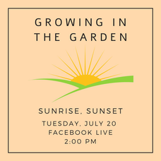 Macculloch Hall Presents  Growing in the Garden: Sunrise, Sunset