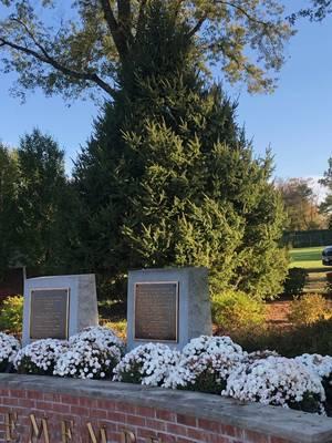 Berkeley Heights Veterans Memorial Park Receives New 20-Foot Norwegian Spruce Thanks to Generous Donation
