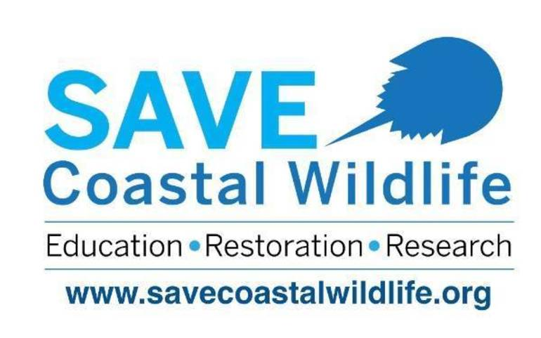 Save Coastal Wildlife: Zoom into the Bayshore Regional Watershed Meeting This Thursday evening.