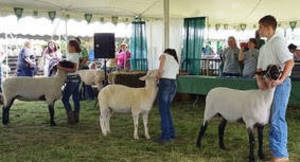 Annual Mercer County 4-H Fair Opens This Weekend for 102nd Year