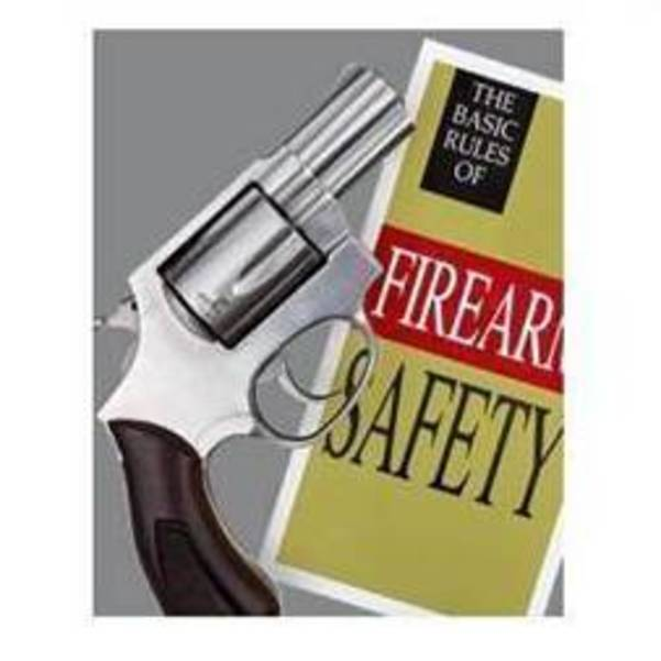 Ladies Firearm Safety Course Flyer