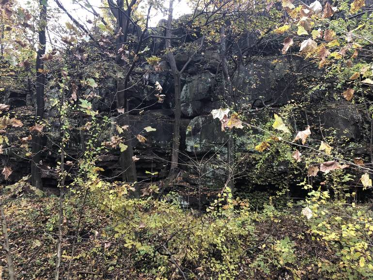 Quarry Lawn