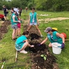 Hundreds of Volunteers Lend Hand to Yorktown's Garden of Hope