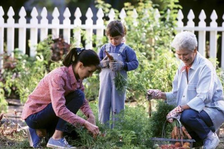 Become the Gardener You Always Wanted to Be