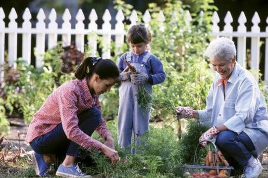 Top story 91e436f16184ee900199 9 gardening mistakes that most people are making4