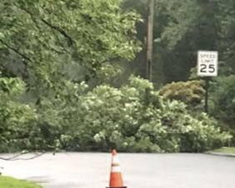 AFlash Flood Warning, Tree Down, Concert Canceled in Warren 9AED126-B9B6-4373-9270-182137F0A11D.jpeg