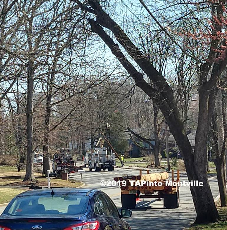 a car accident April 4, 2019 Konner Ave. - Michael Benno.jpg