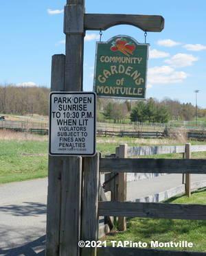 Carousel image 6876b2815e488791f230 a community garden sign  2021 tapinto montville
