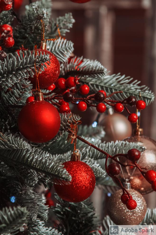 Christmas Tree Fundraiser Begins Today at Hillside Hose Fire Department