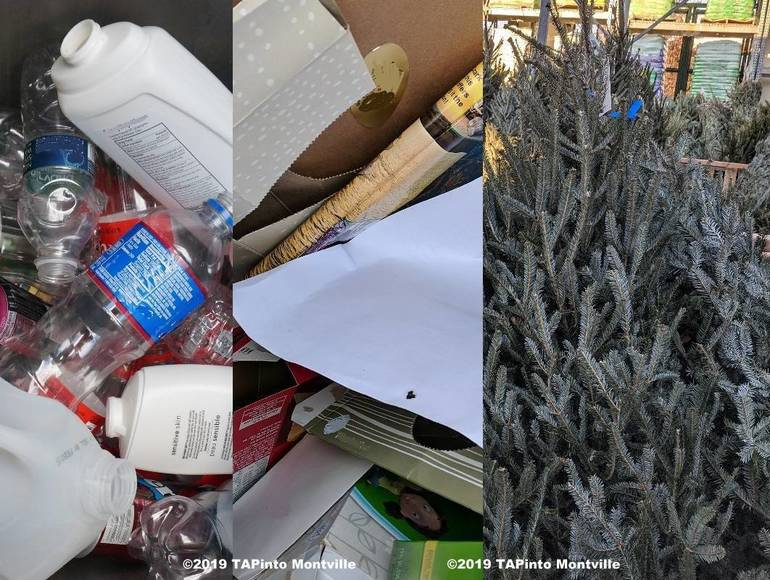 a december tree and recycling story - Copy ©2019 TAPinto Montville copy.jpg