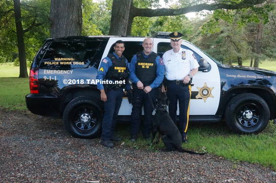 Top story 6dc09e708a625427c5e8 a det. sgt. aaron tomasini  det. michael carbone  and sheriff james gannon with boomer  2018 tapinto montville     2