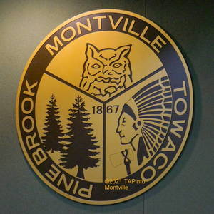 Carousel image ad4bba03a18db10d4f9e a municipal building montville township insignia  2021 tapinto montville