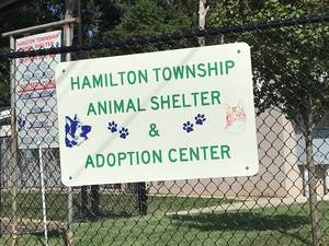 Carousel image fe3ac607e300c00e6108 animal shelter sign