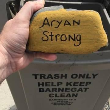Top story 75406d355871c00a5756 aryan rock