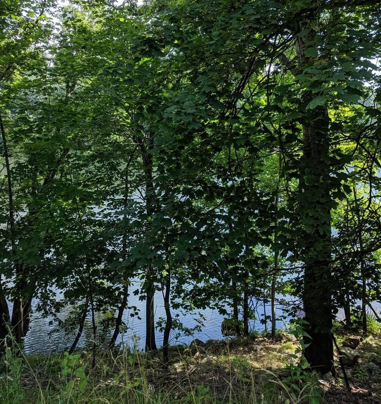 a The Jersey City Reservoir as seen in Boonton.jpg