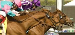 Carousel image 1160f7b8b97adde5b243 at the track