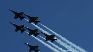 Carousel image 63dc57f4c7a39fce88ce a the u.s. navy blue angels