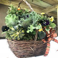 Carousel image f26d580040534d49bbd3 autumn house plant arrangement workshop