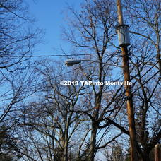 Carousel image b84de5428fc9985a2add a wires and treees in towaco  2019 tapinto montville