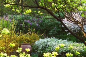 Summit Arboretum Hosts 'Go Public Garden Days' May 7-16
