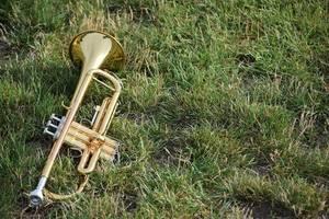 Carousel image 0399a9af524c8127d9aa band horn brass grass