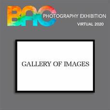 Carousel image 240183b7269ed3b98bdf bacgalleryofimages