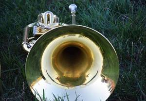 Carousel image 4068a9d11eda790e7250 band grass brass