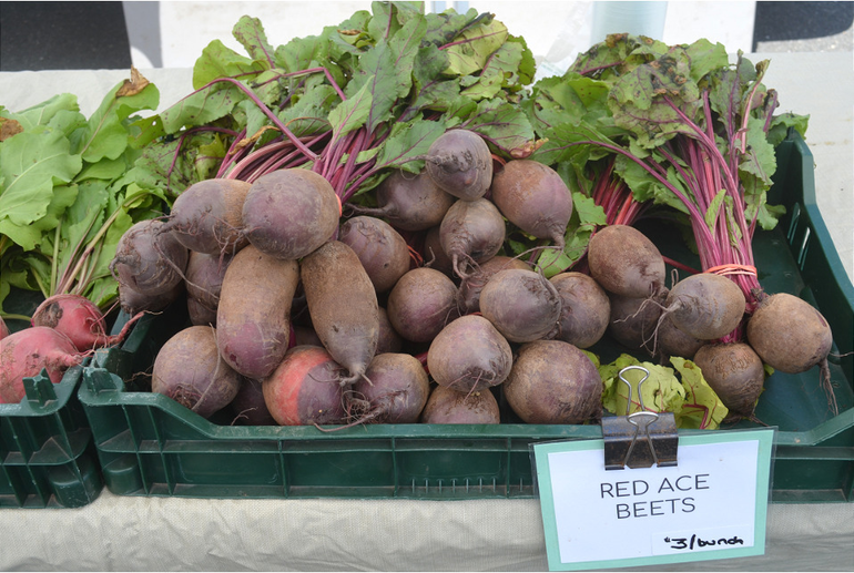 Beets at the Scotch Plains Farmers Market.