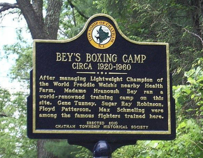 Bey's Boxing Camp Marker - CTHS Photo.jpg