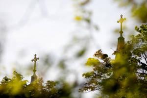 Priest, abuse, Catholic