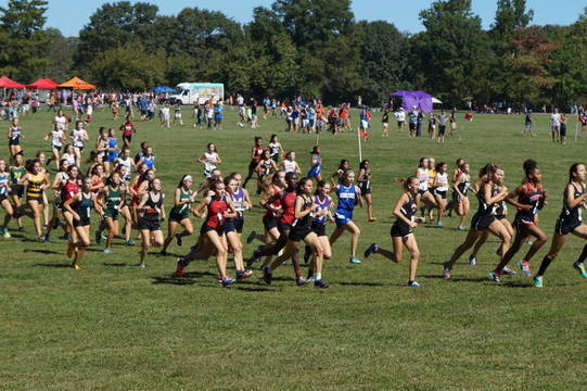 Top story 315289a460674bed96c1 best crop 9fdfb7f58e29aea721c2 cross country   thompson park class meet   sept 23 2017   sophomore girls race dsc00653  1  2x