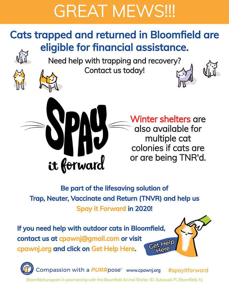 Bloomfield_Spay it Forward_January 2020 Great Mews Financial Assistance.jpg