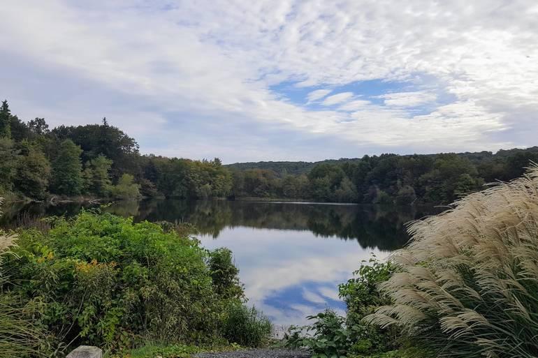 Black River Pond 2018.jpg