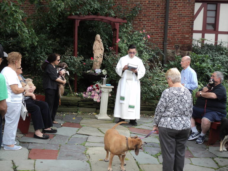 Blessing Father Gabriel and animals.JPG