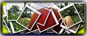 Carousel image 66c8b373386a46769adf blursnapsto a poem
