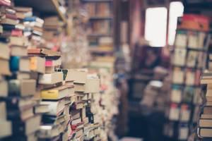 Roxbury Public Library Plans 'Flash Book Sale'