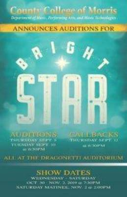 Carousel image 4ef43412b0724abe3f5f bright star audition poster 194x300