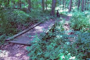 Roxbury, NJ trails, Roxbury Boy Scouts